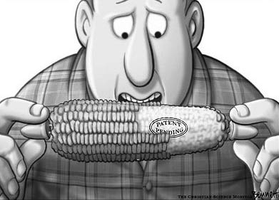 If you find problems with genetically modified foods watch out if you find problems with genetically modified foods watch out publicscrutiny Choice Image